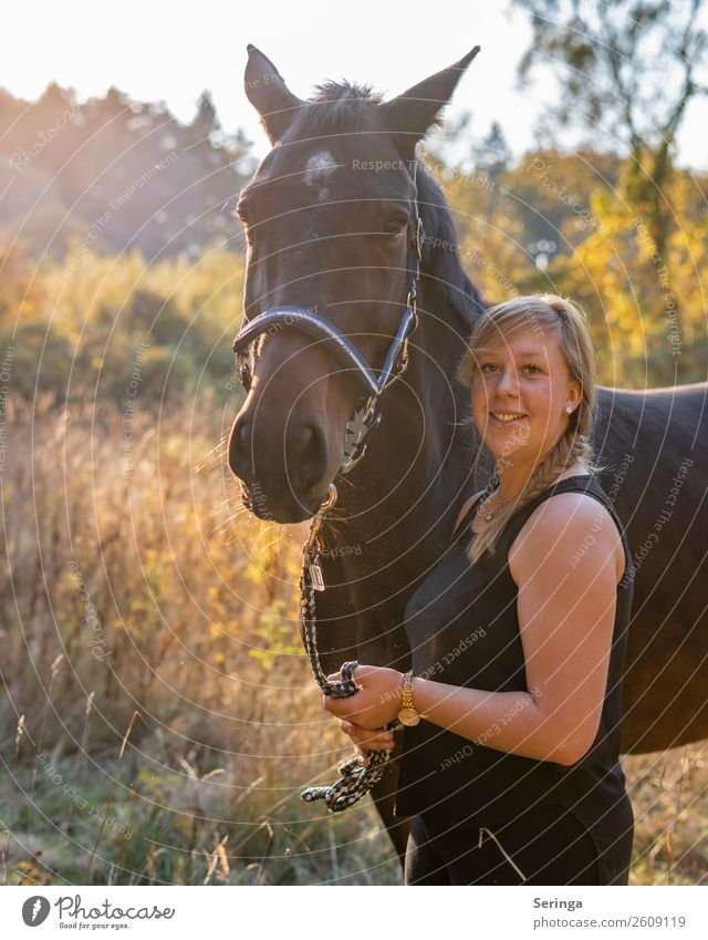 horse love Environment Nature Landscape Plant Animal Pet Farm animal Horse Animal face 1 To feed Feeding Ponytail Horse's head Horseback Colour photo