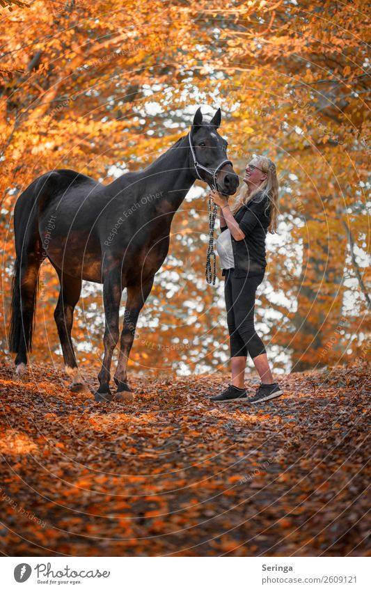 Friends forever Leisure and hobbies Sports Equestrian sports Human being Feminine Woman Adults 1 Animal Horse Walking Exterior shot Copy Space top