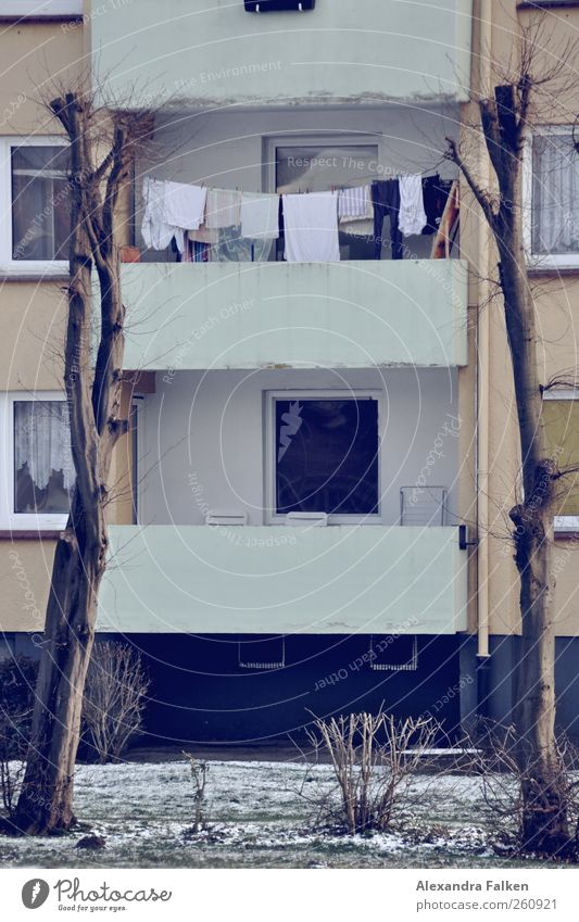 Washing on trees II. House (Residential Structure) Building Facade Balcony Cleanliness Housekeeping Clothesline Tree Town house (City: Block of flats)