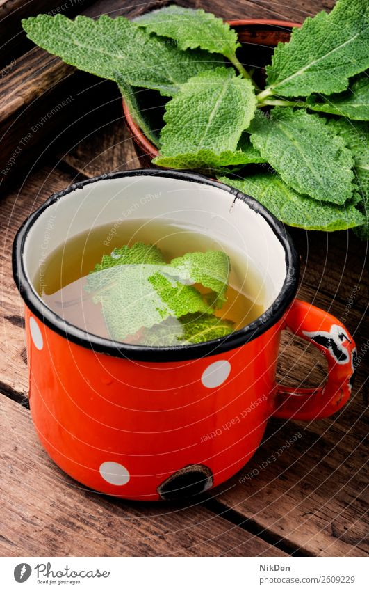 Cup of fresh herbal tea drink sage cup plant hot salvia natural wooden metal cup medicine healthy beverage green aroma freshness vintage retro aromatic