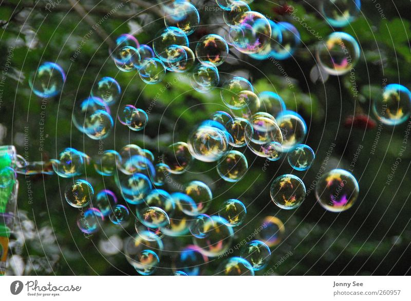 Soap bubbles, colorful, dreaming, relaxing, Elegant Joy Happy Harmonious Relaxation Leisure and hobbies Playing Children's game Event Feasts & Celebrations