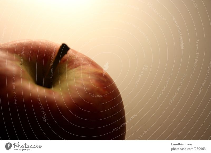 The apple. Food Fruit Apple Healthy Delicious Round Red Colour photo Close-up Deserted Neutral Background Artificial light Shadow