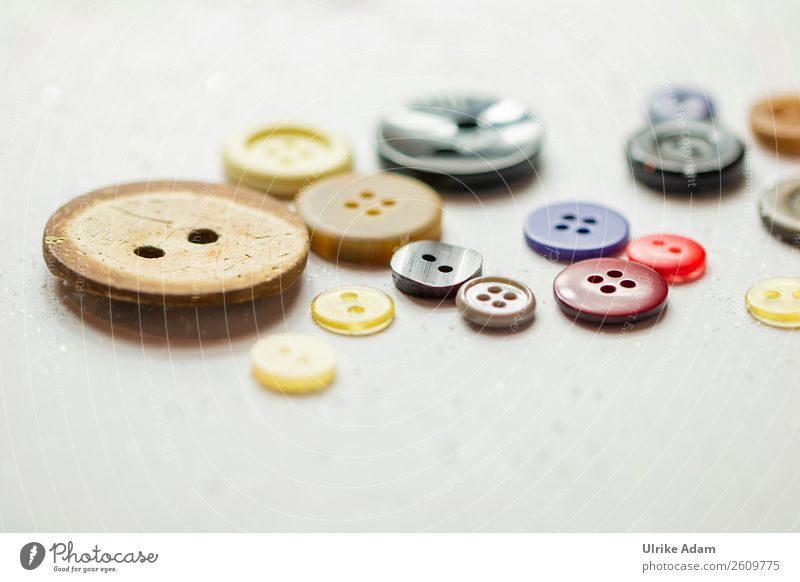 Colourful buttons Design Handcrafts Buttons Wood Plastic Round Multicoloured Sewing Dry goods Buttonhole Things wooden button Many do needlework Clothing