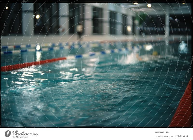 schwimmen gehen Lifestyle Leisure and hobbies Living or residing Sports Fitness Sports Training Aquatics Swimming & Bathing Sporting Complex Sporting event