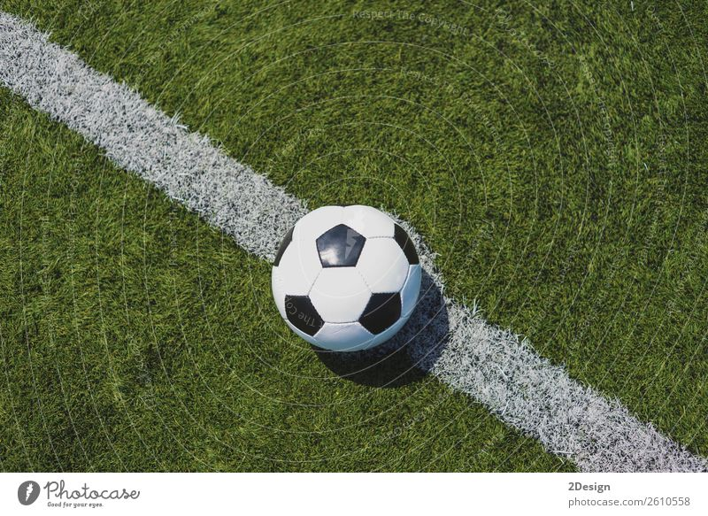 Vintage soccer ball on green grass over the white line Sports Sports team Success Soccer Stadium Grass Leather Fresh Green White Competition Achievement