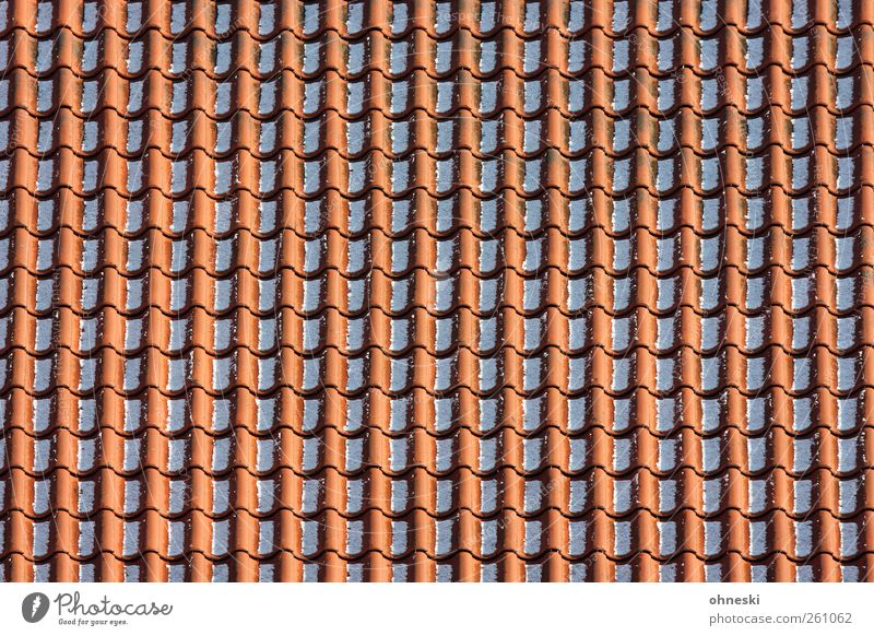 order Craftsperson Roofer Winter Snow House (Residential Structure) Roofing tile Line Red Arrangement Orderliness Colour photo Exterior shot Abstract Pattern