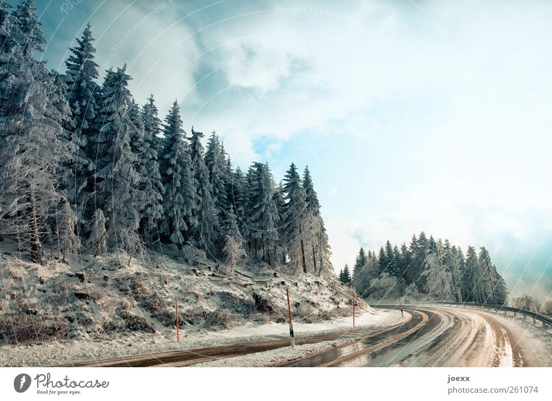 Black Forest Highway Nature Landscape Sky Clouds Winter Weather Tree Mountain Traffic infrastructure Street Cold Wet Blue Brown White Overpass