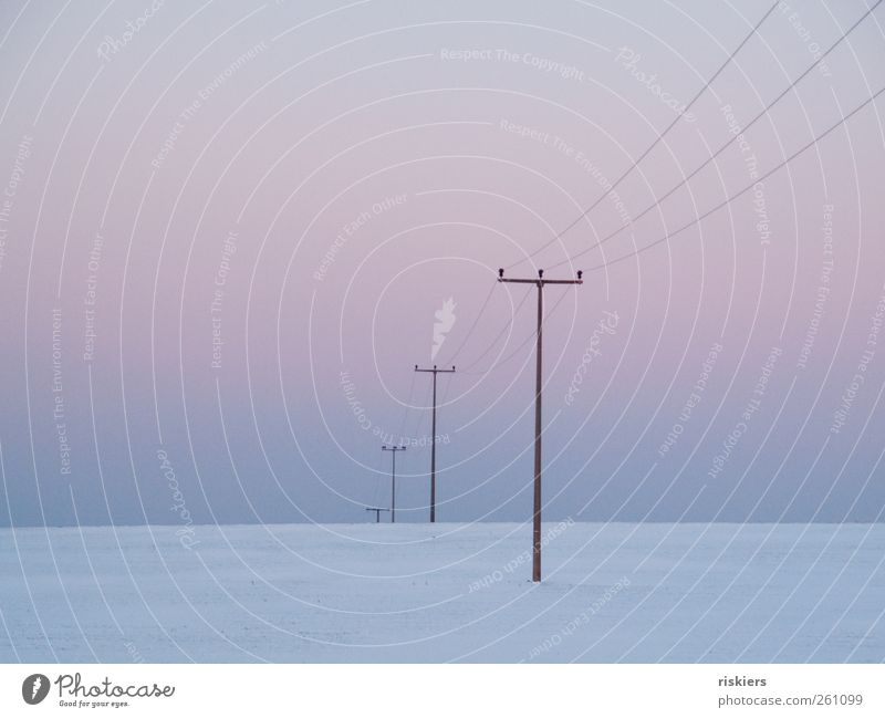 connection Landscape Sky Cloudless sky Winter Snow Field Deserted Cold Gloomy Calm Minimalistic Electricity pylon Colour photo Subdued colour Exterior shot