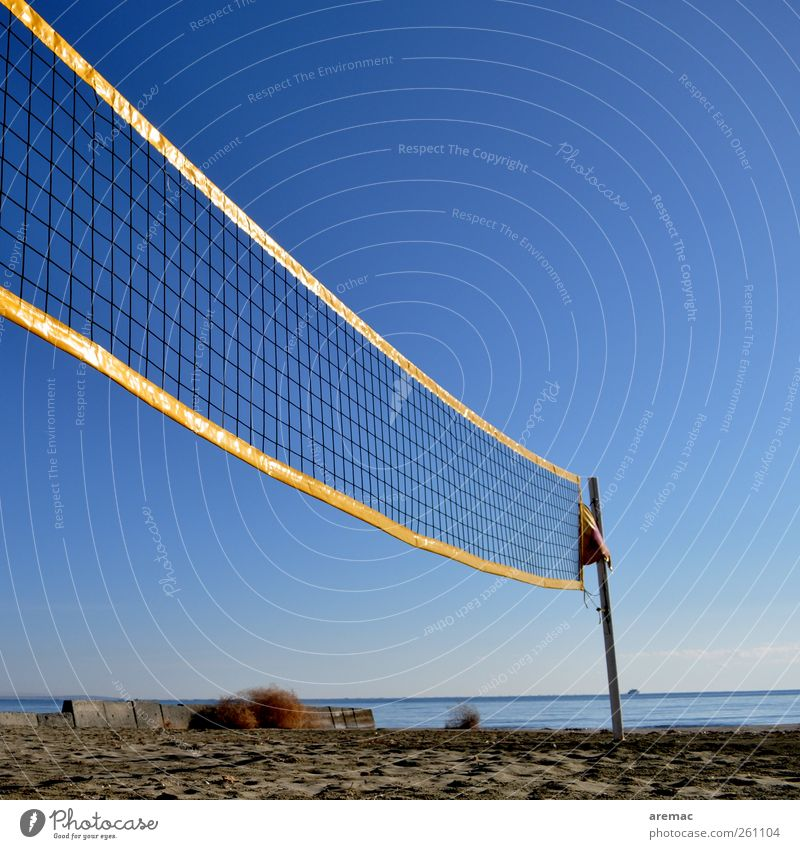 off-season Sports Ball sports Volleyball (sport) Volleyball net Volleyball court Sand Sky Cloudless sky Autumn Beautiful weather Beach Playing Colour photo