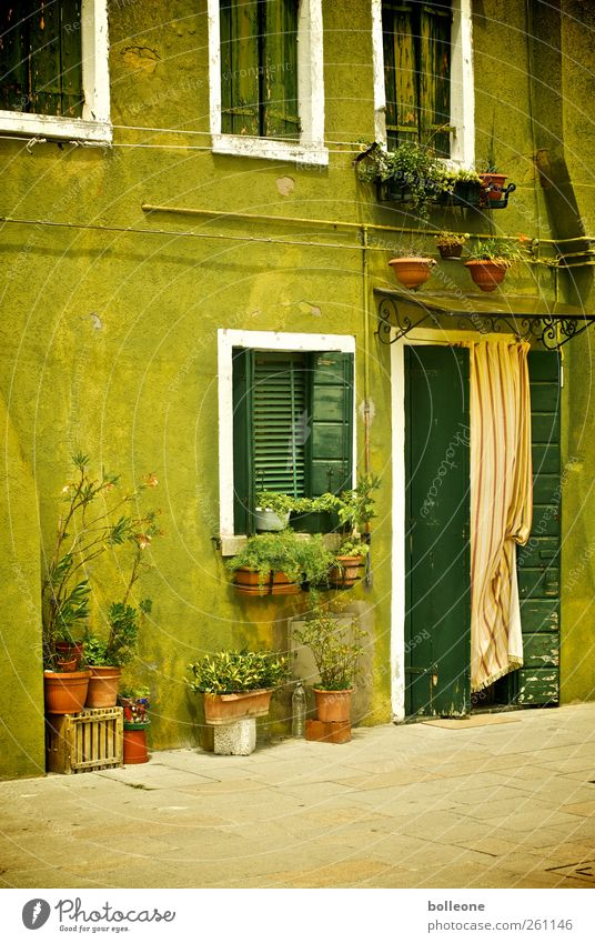Burano is green Vacation & Travel Tourism Trip City trip Summer Living or residing House (Residential Structure) Venice Italy Fishing village Small Town