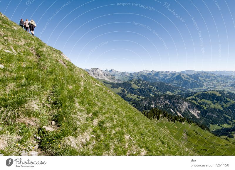 Human being Nature Youth (Young adults) Summer Calm Adults Far-off places Life Landscape Mountain Above Freedom Grass Tall Hiking Trip