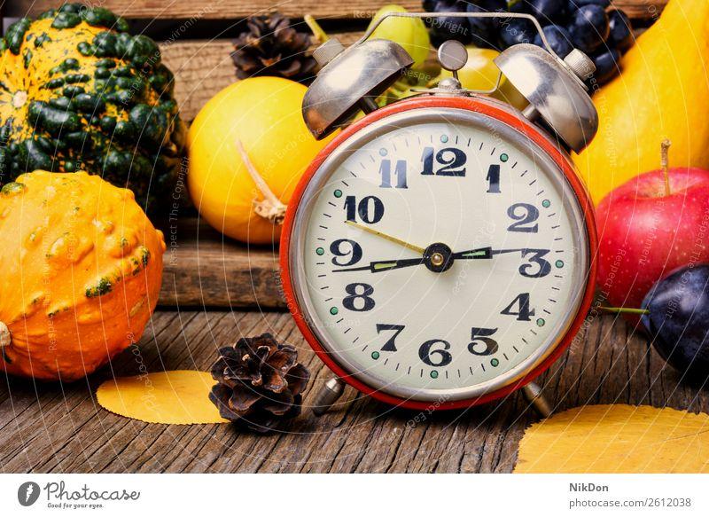 Beautiful autumn harvest and clock pumpkin decoration fall harvesting retro time alarm concept vintage hour timer november timepiece autumn background symbol