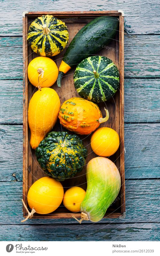 Autumn still life with pumpkins autumn fall season seasonal vegetable halloween autumn pumpkin box september autumn card thanksgiving background food yellow