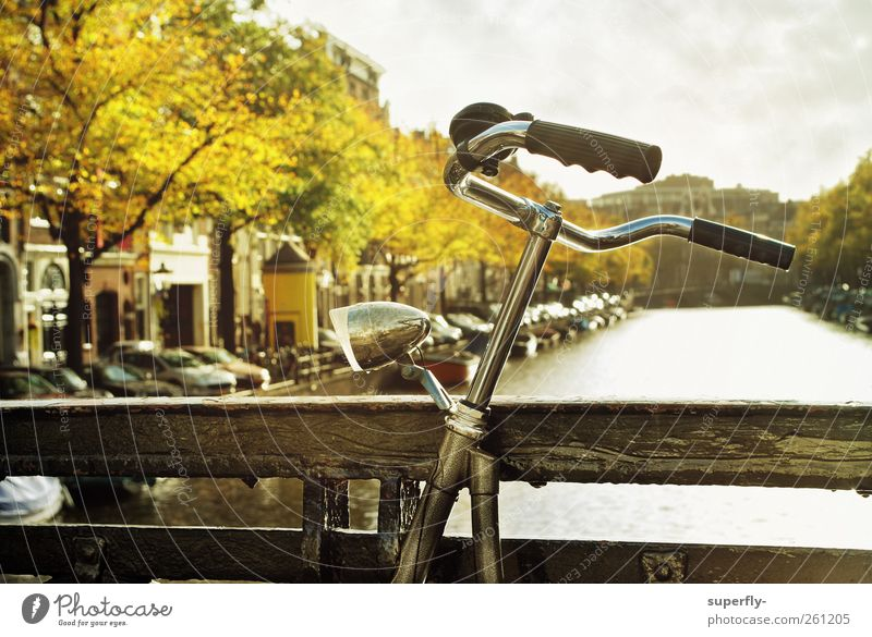 Bicycle in Amsterdam Sky Clouds Sun Sunlight Autumn Beautiful weather Tree Leaf River Netherlands Europe Town Capital city Downtown Deserted