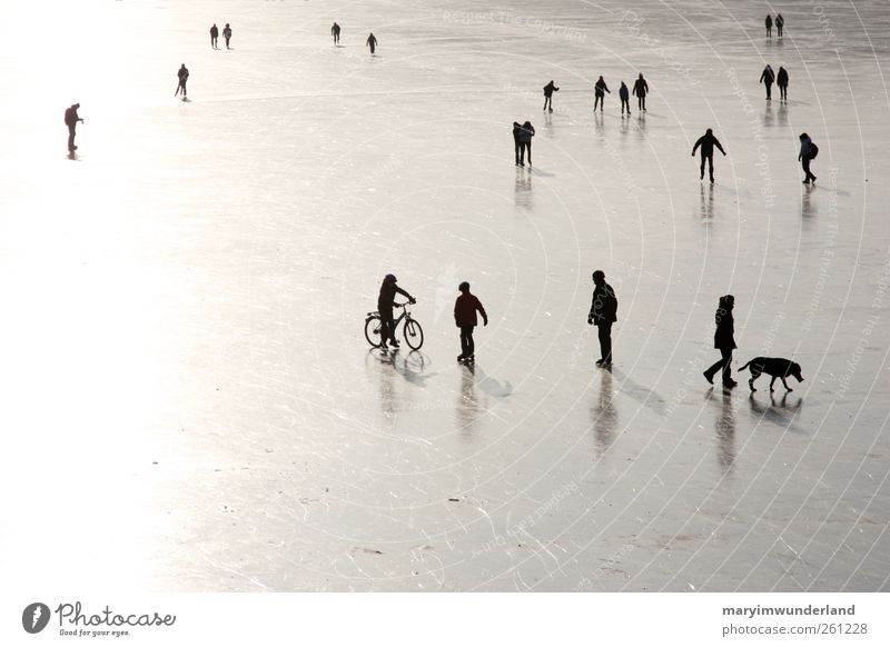 Human being Dog Nature Water Winter Small Lake Friendship Ice Going Frost To go for a walk Smoothness Graphic Ice-skating Black & white photo