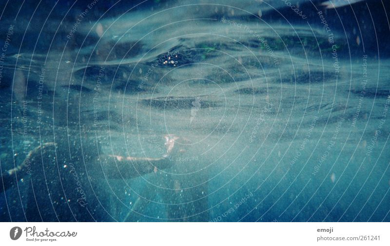 Blue Water Ocean Waves Swimming & Bathing Wet Elements Dive Soap bubble Underwater photo Sportsperson Surface of water Light Snorkeling