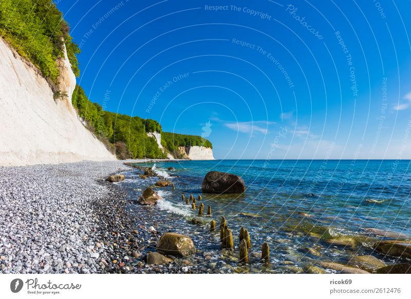 On the coast of the Baltic Sea on the island of Rügen Relaxation Vacation & Travel Tourism Ocean Nature Landscape Clouds Tree Forest Rock Coast
