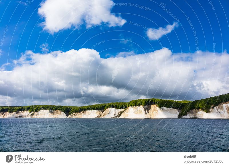 On the coast of the Baltic Sea on the island of Rügen Relaxation Vacation & Travel Tourism Nature Landscape Clouds Tree Forest Coast Tourist Attraction Blue