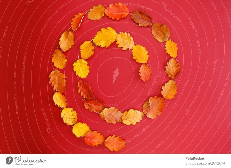 #A# Autumn Strudel Art Esthetic Balance Pattern Whirlpool Autumnal Design Autumn leaves Autumnal colours Early fall Autumn storm Autumn wind Red Symmetry