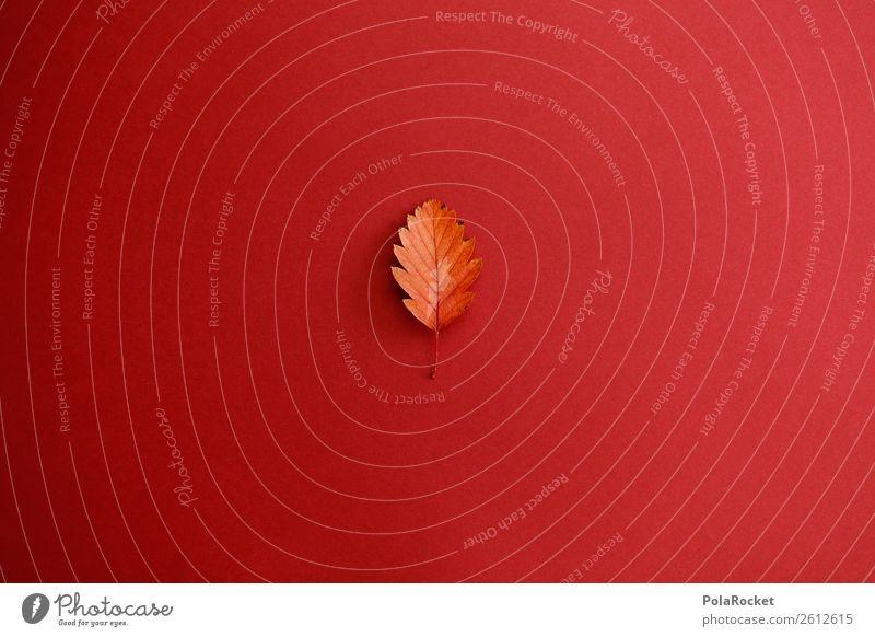 #A# Sheet Design Art Esthetic Leaf Autumn Autumnal Autumn leaves Early fall Autumnal colours Partition Minimalistic Colour photo Multicoloured Interior shot