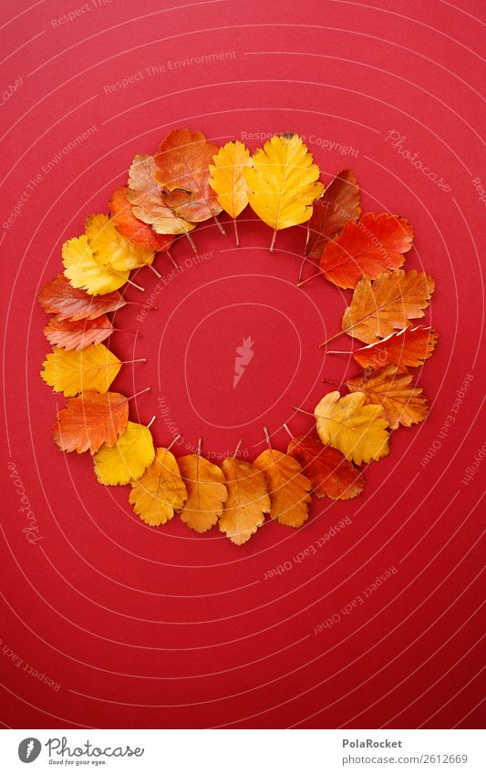 #A# Autumn Wheel Art Esthetic Autumnal Autumn leaves Autumnal colours Early fall Automn wood Leaf Seasons Decoration Creativity Design Red Eye-catcher