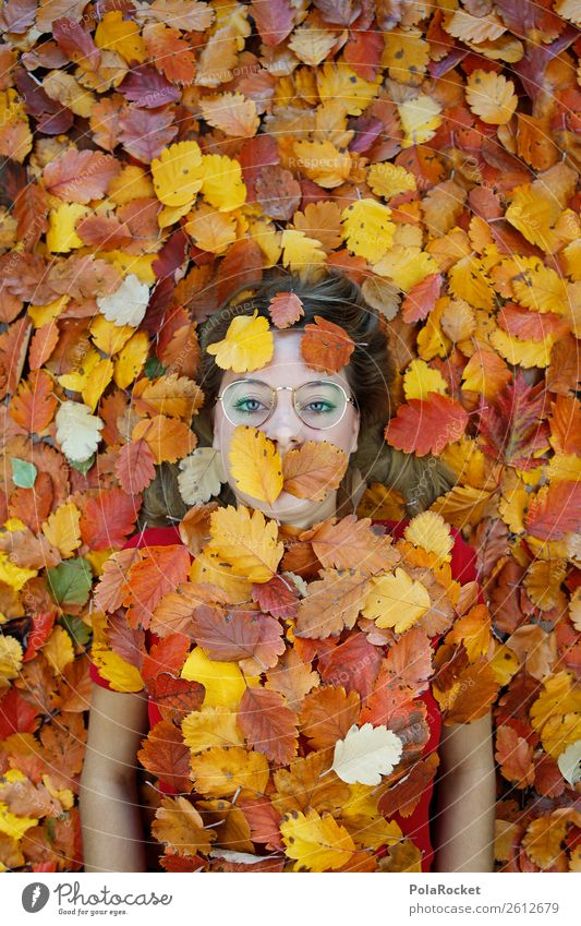 #A# autumn tired Art Esthetic Autumn Autumnal Autumn leaves Autumnal colours Early fall Automn wood Autumnal weather Autumnal landscape Autumn storm Autumn wind