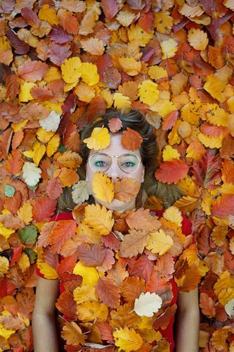 #A# autumn tired Art Esthetic Autumn Autumnal Autumn leaves Autumnal colours Early fall Automn wood Autumnal weather Autumnal landscape Autumn storm Autumn wind