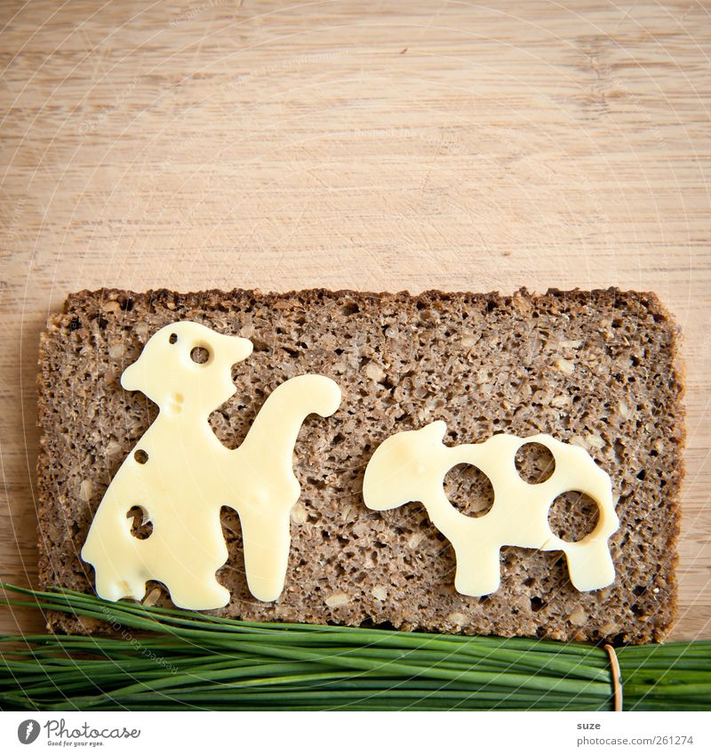 Green Funny Brown Food Healthy Eating Nutrition Creativity Idea Herbs and spices Delicious Sheep Bread Organic produce Animalistic Sandwich Cheese