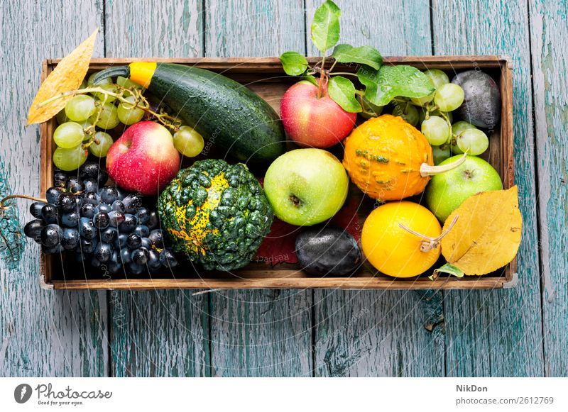 Beautiful autumn harvest pumpkin decoration fall harvesting season vegetable natural seasonal grapes berry plum still life yellow nature food tray background