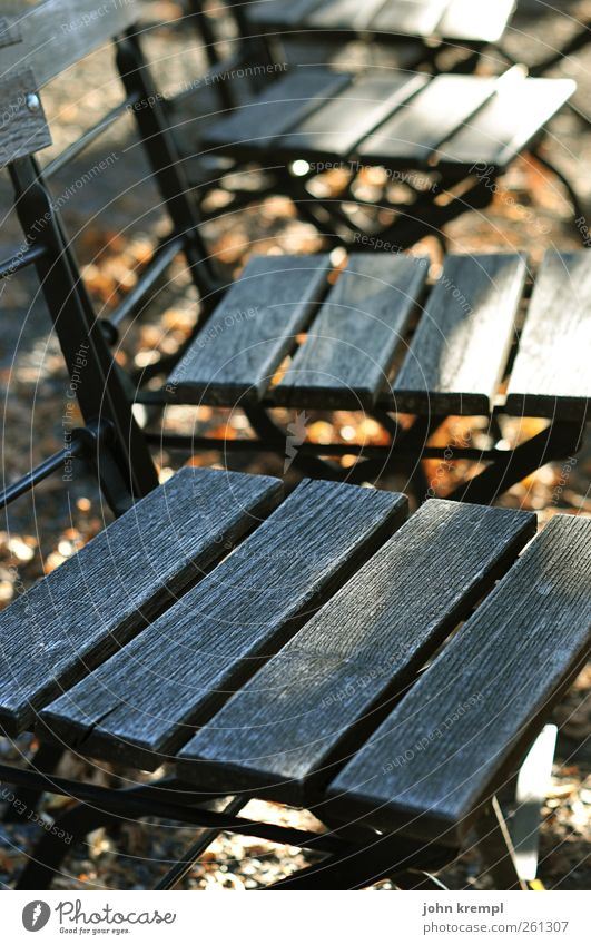 Old Relaxation Loneliness Autumn Wood Gray Brown Idyll Wait Transience Change Chair Peace Services Autumnal Faded