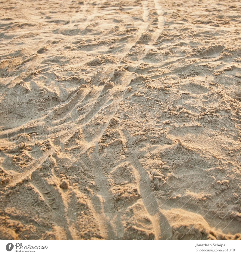 Traces in the sand Contentment Senses Relaxation Calm Meditation Vacation & Travel Tourism Far-off places Freedom Expedition Summer Summer vacation Beach