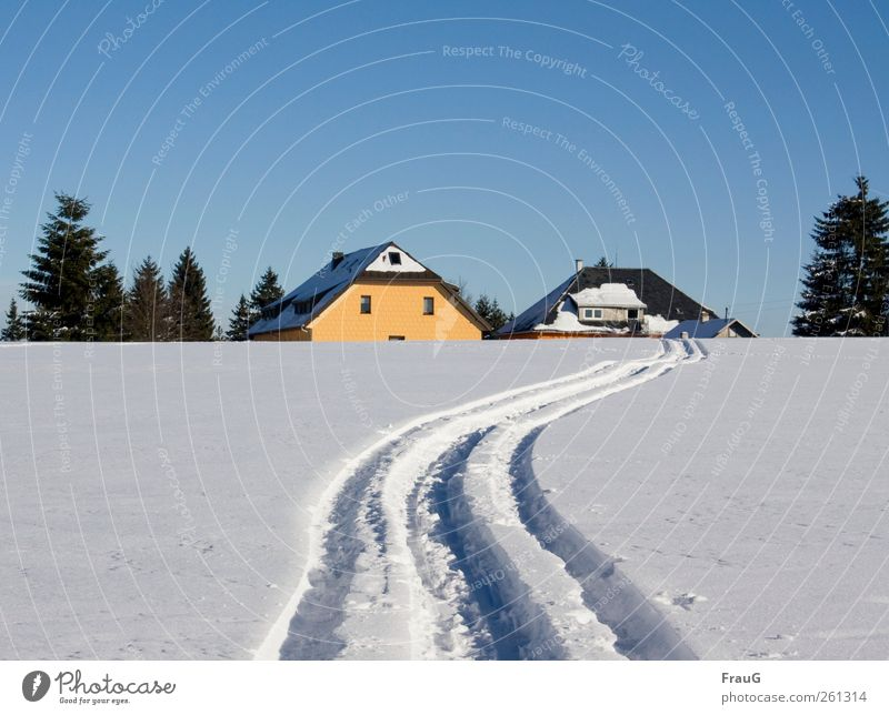 Blue White Tree Winter House (Residential Structure) Yellow Snow Ice Trip Living or residing Skiing Frost Roof Village Beautiful weather Chimney
