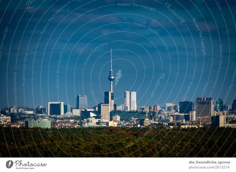 Skyline Berlin Cloudless sky Horizon Summer Autumn Beautiful weather Tree Forest Germany Europe Town Capital city Downtown High-rise Tourist Attraction Blue