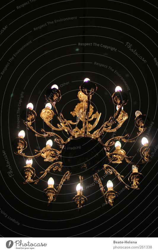 The search for the next chandelier Lifestyle Elegant Style Design Living or residing Flat (apartment) Interior design Lamp Decoration Metal Exotic Gold Black