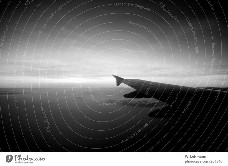 Death Transport Airplane Aviation Beautiful weather Traffic infrastructure Means of transport Passenger plane