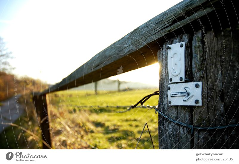 To the latte Fence Barbed wire Light Beautiful Physics Meadow Hill Blur Near Bushes Wooden board Autumn Sun Evening Warmth Pasture Sky Street Lanes & trails
