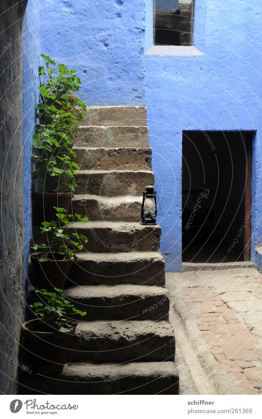 blue stairs House (Residential Structure) Manmade structures Wall (barrier) Wall (building) Stairs Facade Tourist Attraction Monument Blue Colour Geranium
