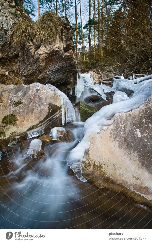-16° Nature Landscape Water Ice Frost Forest Rock Brook Cold Colour photo Exterior shot Day Long exposure Wide angle