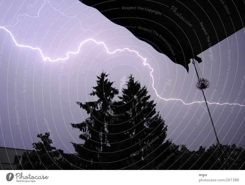thunderstorms Energy industry Energy crisis Sky Storm clouds Night sky Weather Bad weather Gale Thunder and lightning Lightning Tree