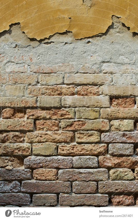 A piece of Venice Vacation & Travel Italy Town Architecture Wall (barrier) Wall (building) Stone Brick Old Poverty Dirty Brown Decline Past Transience