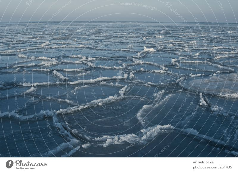 Arctic Ocean Nature Landscape Horizon Winter Climate Climate change Ice Frost Baltic Sea Swimming & Bathing Cold Blue Float in the water Ice floe Frozen Grind