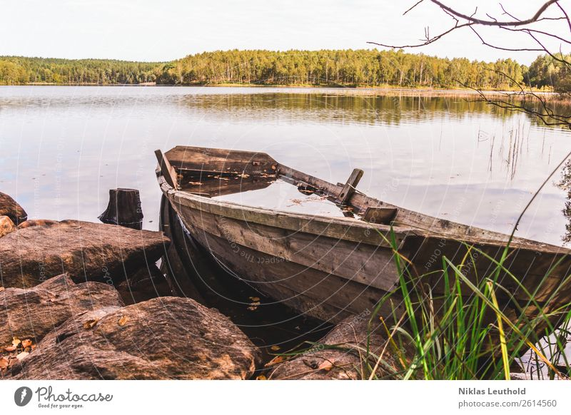 Wooden boat on the shore full of water Summer Landscape Water Sky Sunlight Beautiful weather Plant Tree Grass Wild plant Forest Rock Coast Lakeside Navigation