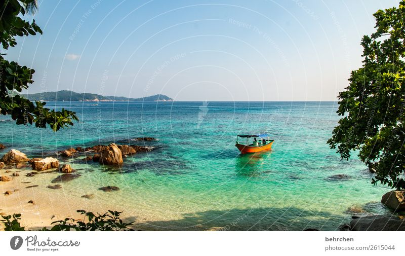 deceleration| perhentian besar relaxation Relaxation recover Romance Palm tree Dream island Paradise Virgin forest Island Asia Landscape Malaya palms Water