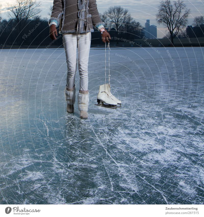 Holiday on ice Leisure and hobbies Ice-skates Ice-skating Frozen Lake Going Frozen surface Cold Feminine Young woman Youth (Young adults) Woman Adults Movement