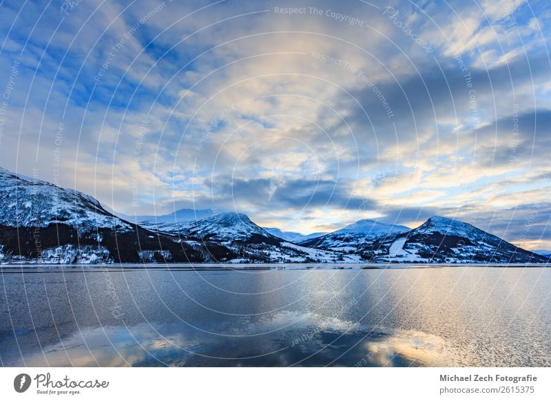 Beautiful view of northern norway fjord in winter Sky Vacation & Travel Nature Summer Blue Landscape Sun Ocean House (Residential Structure) Winter Mountain