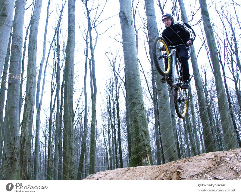 steep flight Bicycle Forest Jump Trick Speed Hill Ramp Brave Tree Extreme sports dirt Movement Dynamics Earth Floor covering Aviation Exterior shot