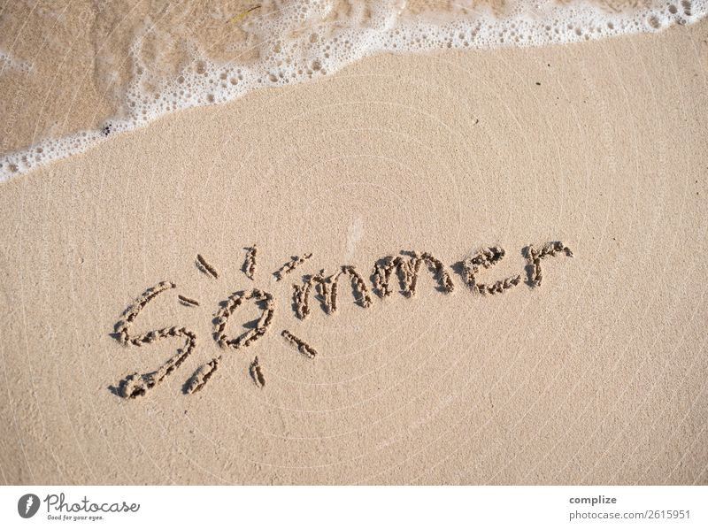 Vacation & Travel Summer Water Sun Ocean Calm Travel photography Beach Warmth Coast Happy Tourism Swimming & Bathing Sand Waves Characters