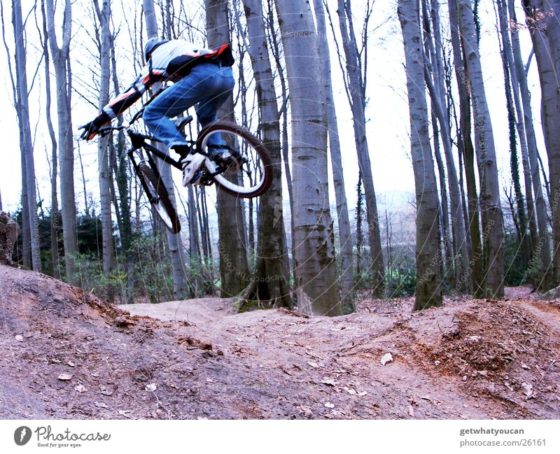 low-altitude flight Bicycle Forest Jump Trick Speed Hill Ramp Brave Tree Extreme sports dirt Movement Dynamics Earth Floor covering Aviation Exterior shot