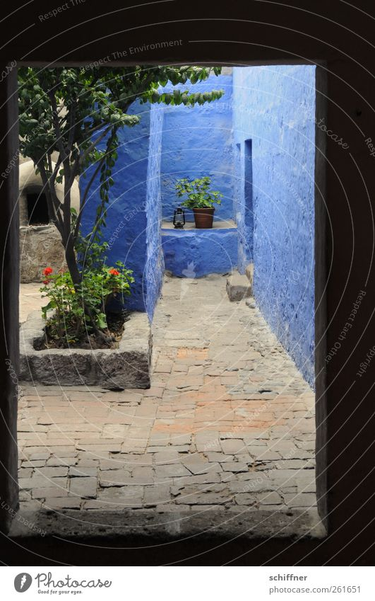 Blue Court Manmade structures Building Architecture Wall (barrier) Wall (building) Facade Tourist Attraction Monument Historic Historic Buildings