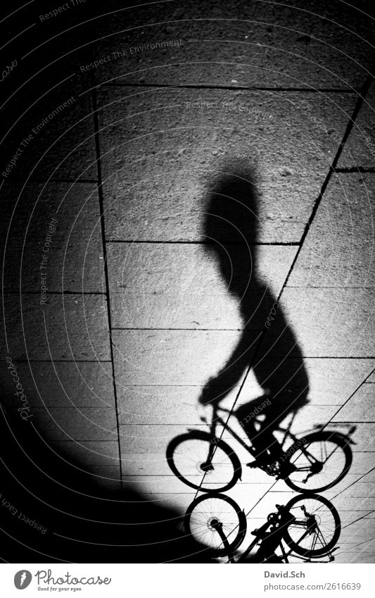 Shadow of a cyclist Lifestyle Athletic Cycling tour Bicycle Human being Body 1 Town Transport Means of transport Street Helmet Thin Black White Power